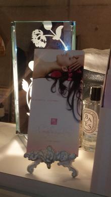 ◆美容家・女社長☆佐々木瑞穂のエステブログ   自由が丘エステサロンオーナー発信!美しき女神たちよさらなる輝きを-090701_153614.jpg