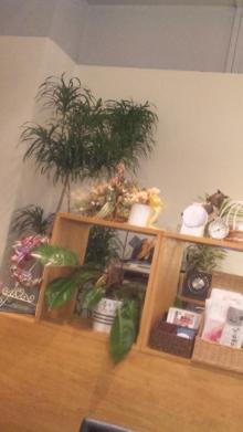 ◆美容家・女社長☆佐々木瑞穂のエステブログ   自由が丘エステサロンオーナー発信!美しき女神たちよさらなる輝きを-DVC00736.jpg