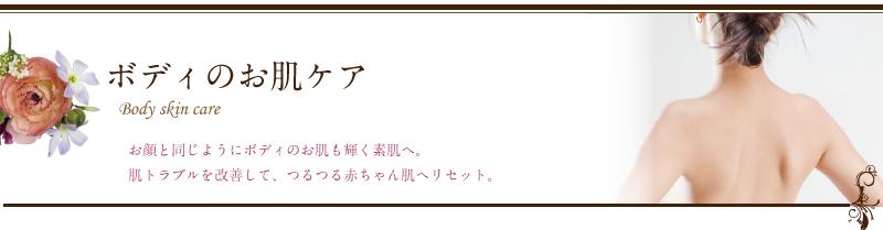 midashi-bodyskin