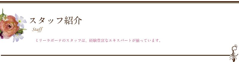 midashi-staff